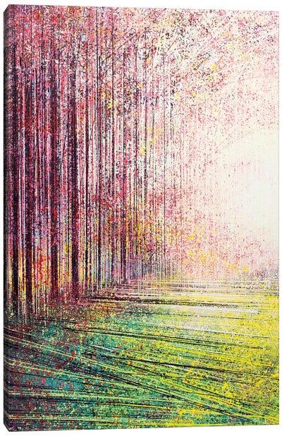 Tree Blossom In Bright Light Canvas Art Print