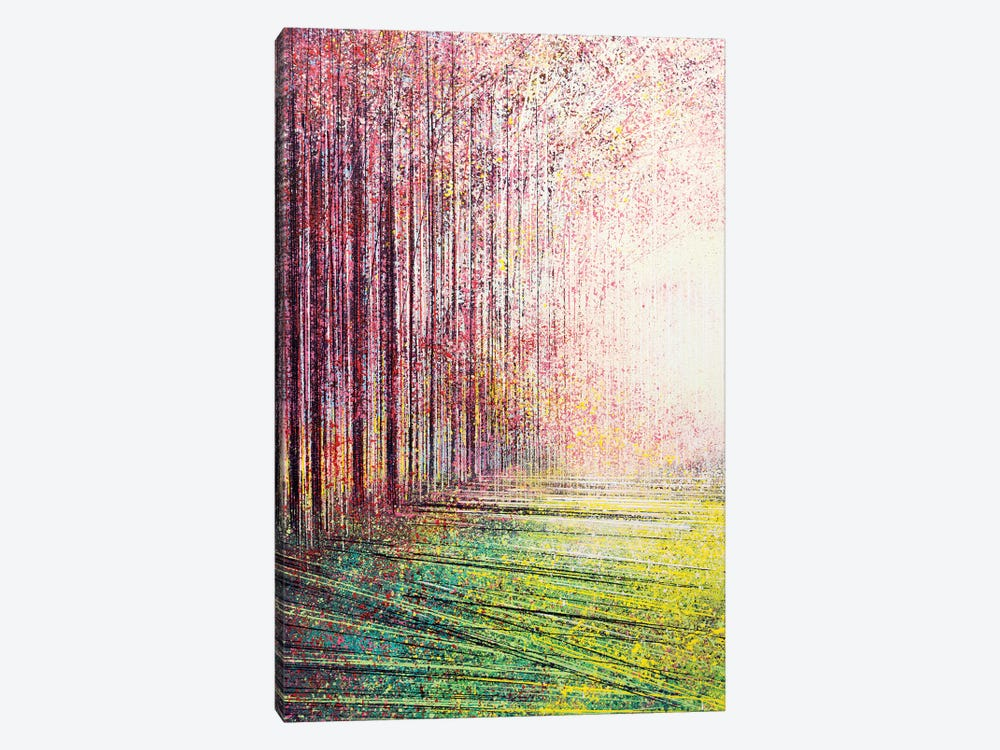 Tree Blossom In Bright Light by Marc Todd 1-piece Canvas Artwork