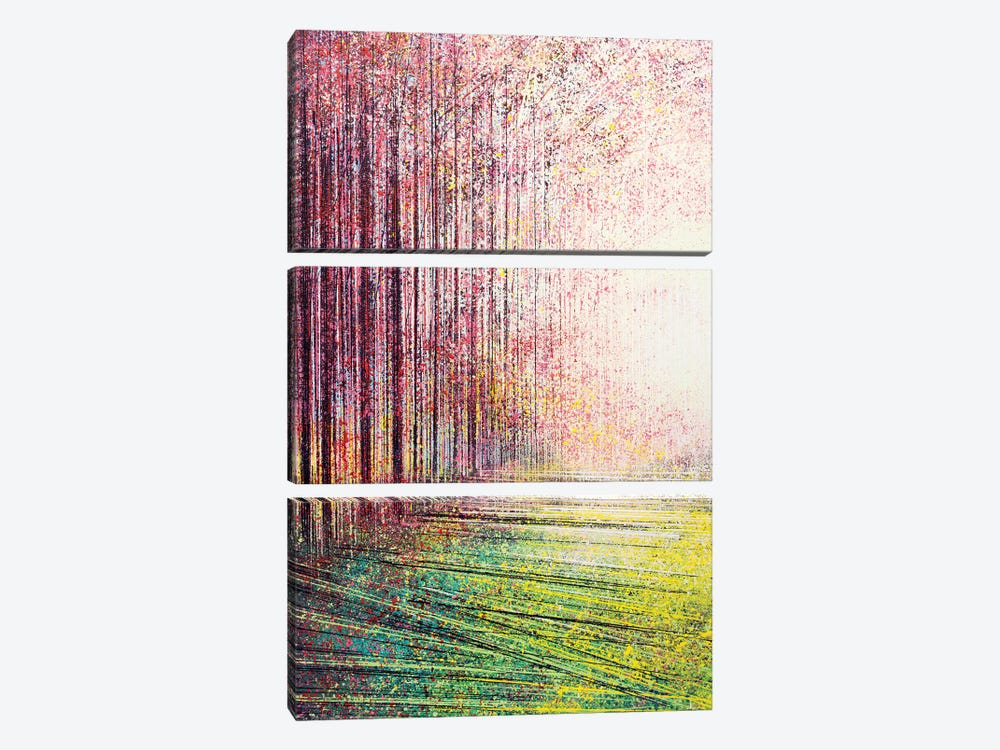 Tree Blossom In Bright Light by Marc Todd 3-piece Canvas Wall Art