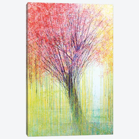 Tree In Spring Light Canvas Print #MRC17} by Marc Todd Canvas Art Print