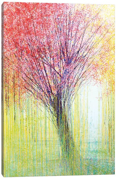 Tree In Spring Light Canvas Art Print