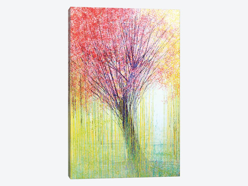 Tree In Spring Light by Marc Todd 1-piece Canvas Print