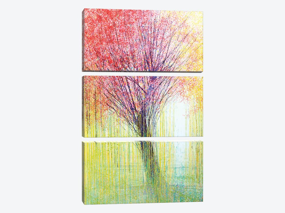 Tree In Spring Light by Marc Todd 3-piece Canvas Art Print