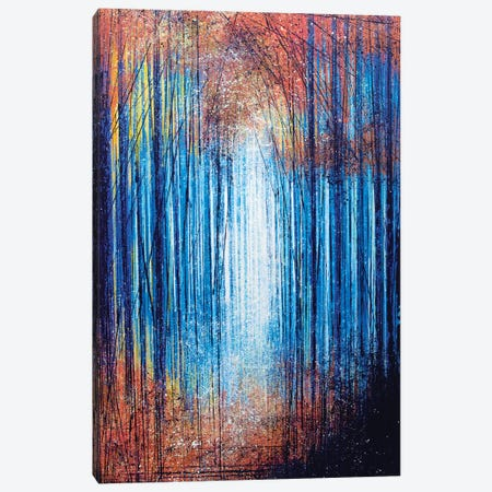 Vivid Light Through Trees Canvas Print #MRC18} by Marc Todd Canvas Art