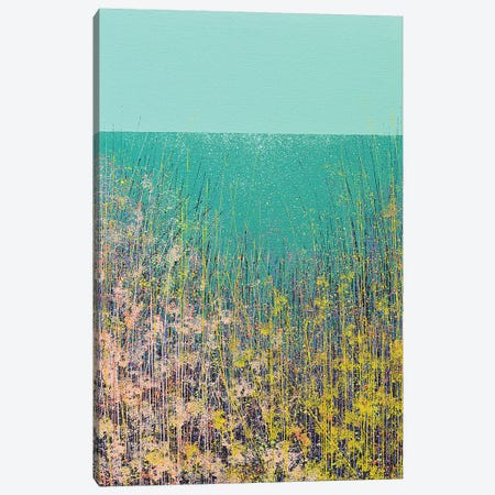 Wild Flower Meadow Canvas Print #MRC20} by Marc Todd Art Print