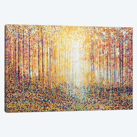 Golden Light Canvas Print #MRC5} by Marc Todd Canvas Wall Art