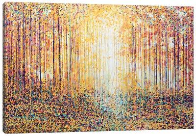 Golden Light Canvas Print #MRC5