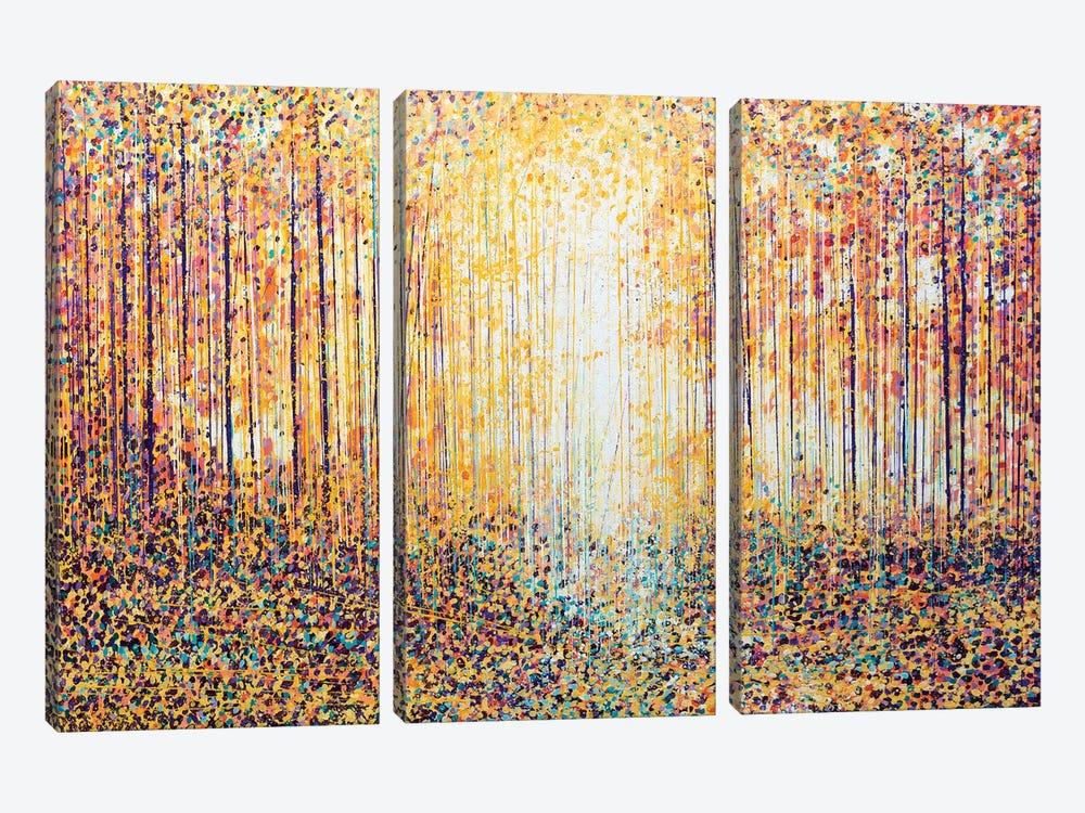 Golden Light by Marc Todd 3-piece Canvas Artwork