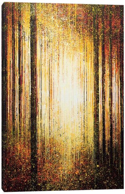 Golden Light Through Trees Canvas Art Print