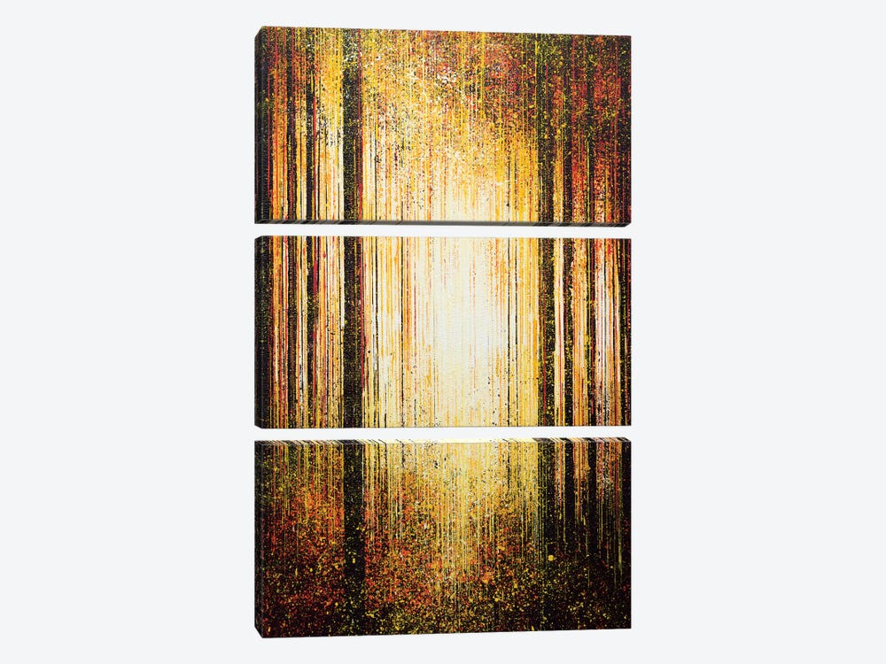 Golden Light Through Trees by Marc Todd 3-piece Canvas Art Print