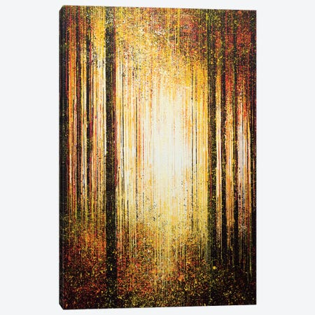 Golden Light Through Trees Canvas Print #MRC6} by Marc Todd Canvas Wall Art