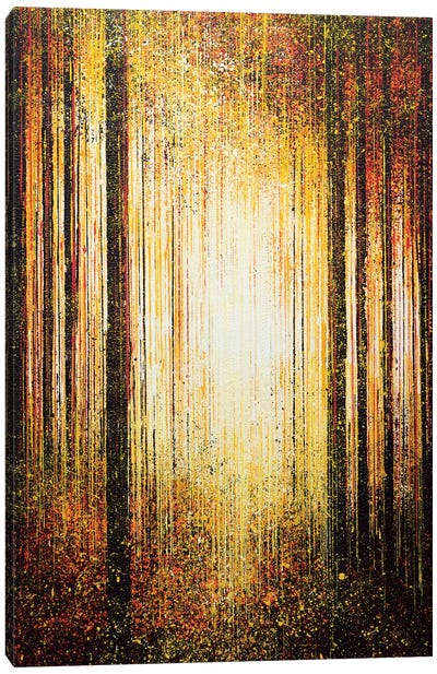 Golden Light Through Trees Canvas Art Print