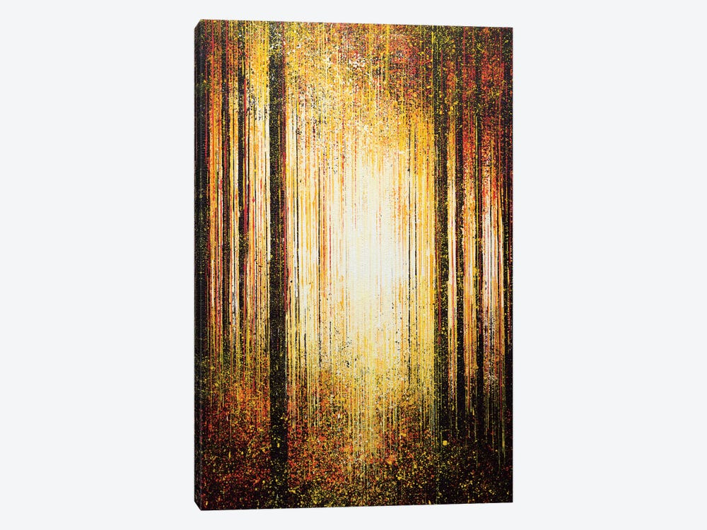 Golden Light Through Trees by Marc Todd 1-piece Art Print