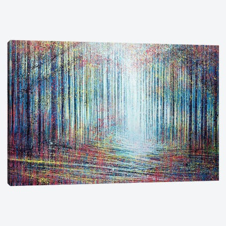Morning Light In The Forest Canvas Print #MRC7} by Marc Todd Canvas Art