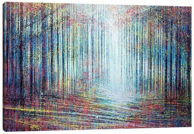 Morning Light In The Forest Canvas Art Print