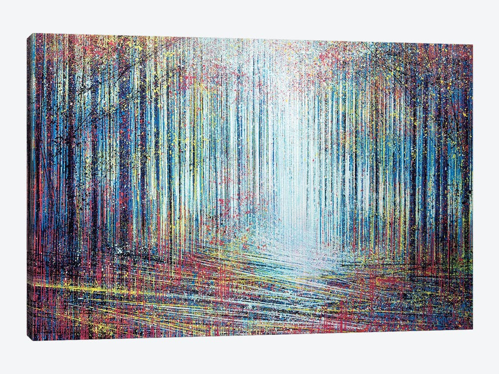 Morning Light In The Forest by Marc Todd 1-piece Canvas Art