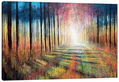 Morning Light Through Trees Canvas Print #MRC8