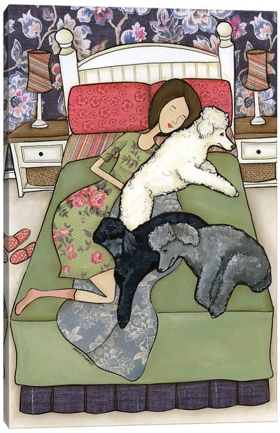 Napping Poodles Canvas Art Print