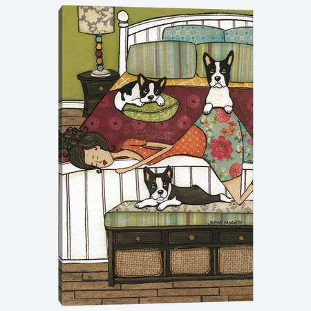 Boston's Bed Canvas Print #MRH212} by Jamie Morath Canvas Print
