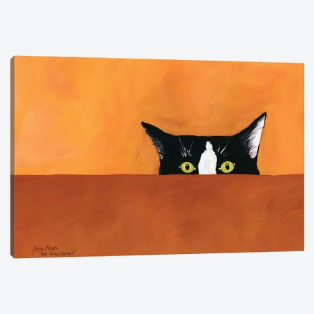 You'Re Being Watched Canvas Print #MRH309} by Jamie Morath Canvas Art Print