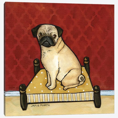 Lady Pug Canvas Print #MRH56} by Jamie Morath Canvas Wall Art