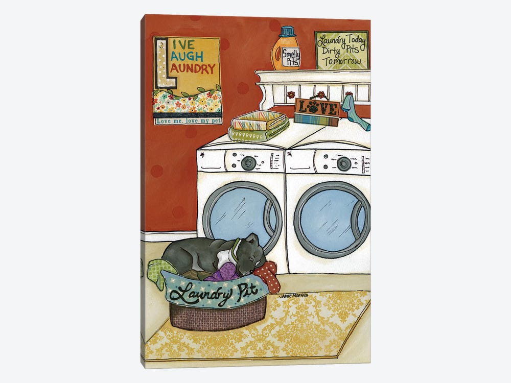 Laundry Pit by Jamie Morath 1-piece Canvas Wall Art