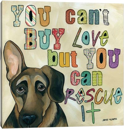Rescue It Canvas Art Print