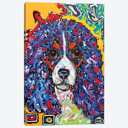 King Charles III Canvas Print #MRK22} by MADdog Art Gallery Art Print