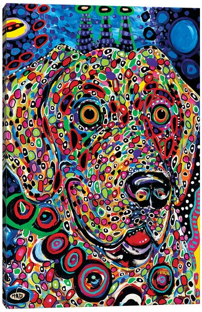 Moon Dog Canvas Art Print