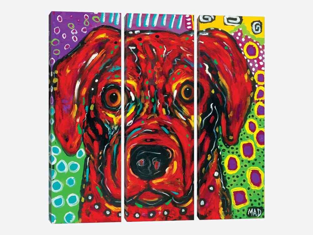 Red Dog by MADdog Art Gallery 3-piece Canvas Art