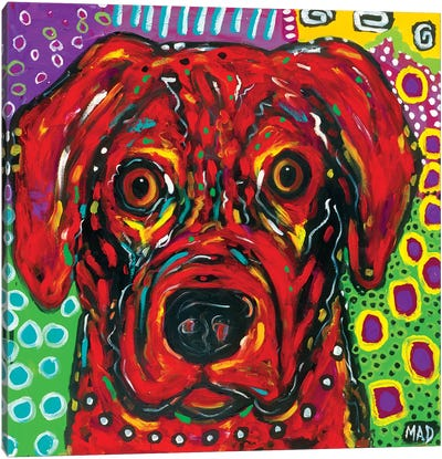 Red Dog Canvas Art Print