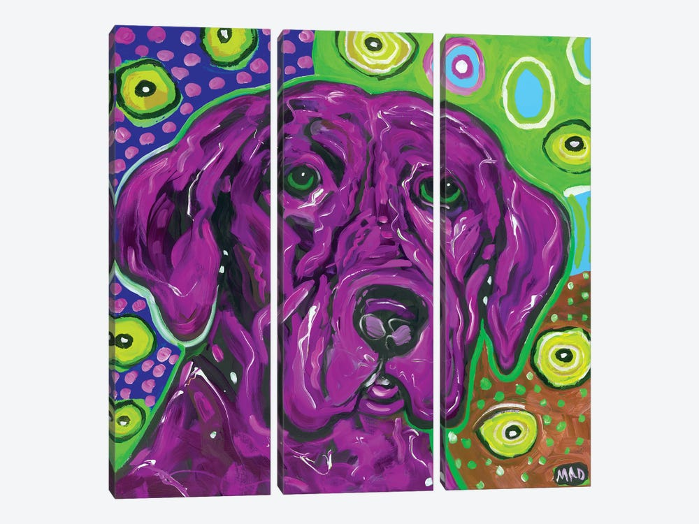 Artopia Blue Lab II by MADdog Art Gallery 3-piece Art Print