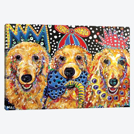 Three Goldens Canvas Print #MRK37} by MADdog Art Gallery Canvas Art Print