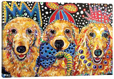 Three Goldens Canvas Art Print