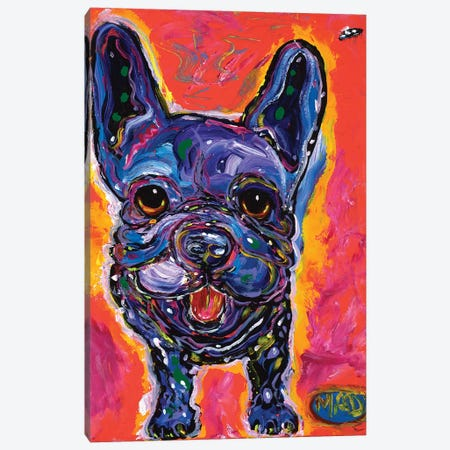 MAD Frenchie Canvas Print #MRK45} by MADdog Art Gallery Canvas Artwork
