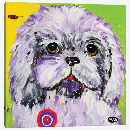 Boo II Canvas Print #MRK4} by MADdog Art Gallery Canvas Art