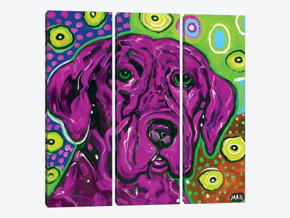 Purple Dog by MADdog Art Gallery 3-piece Canvas Print