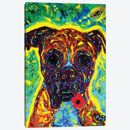 Boxer III Canvas Print #MRK6} by MADdog Art Gallery Canvas Art