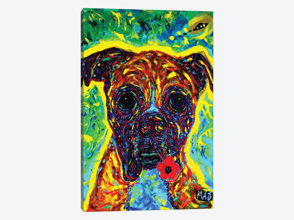 Boxer III by MADdog Art Gallery 1-piece Canvas Print