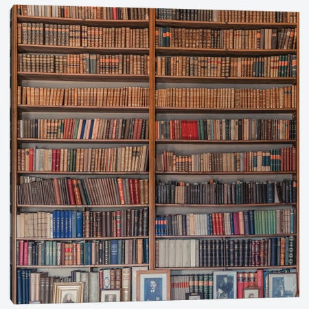 My Library Canvas Print #MRL1} by Miroslaw Canvas Wall Art
