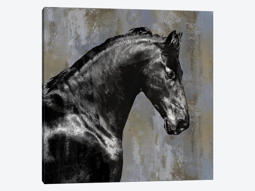 Black Stallion 1-piece Canvas Artwork