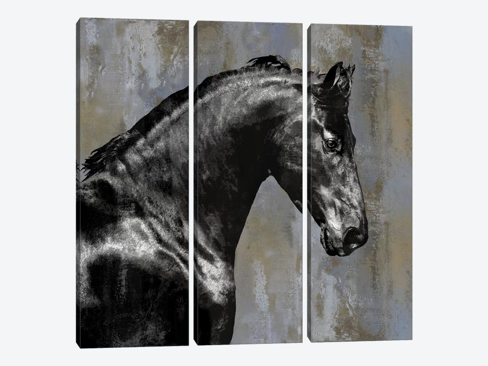 Black Stallion by Martin Rose 3-piece Canvas Wall Art