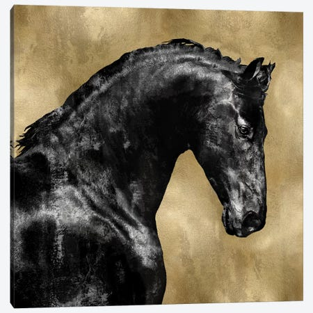 Black Stallion On Gold Canvas Print #MRO2} by Martin Rose Art Print