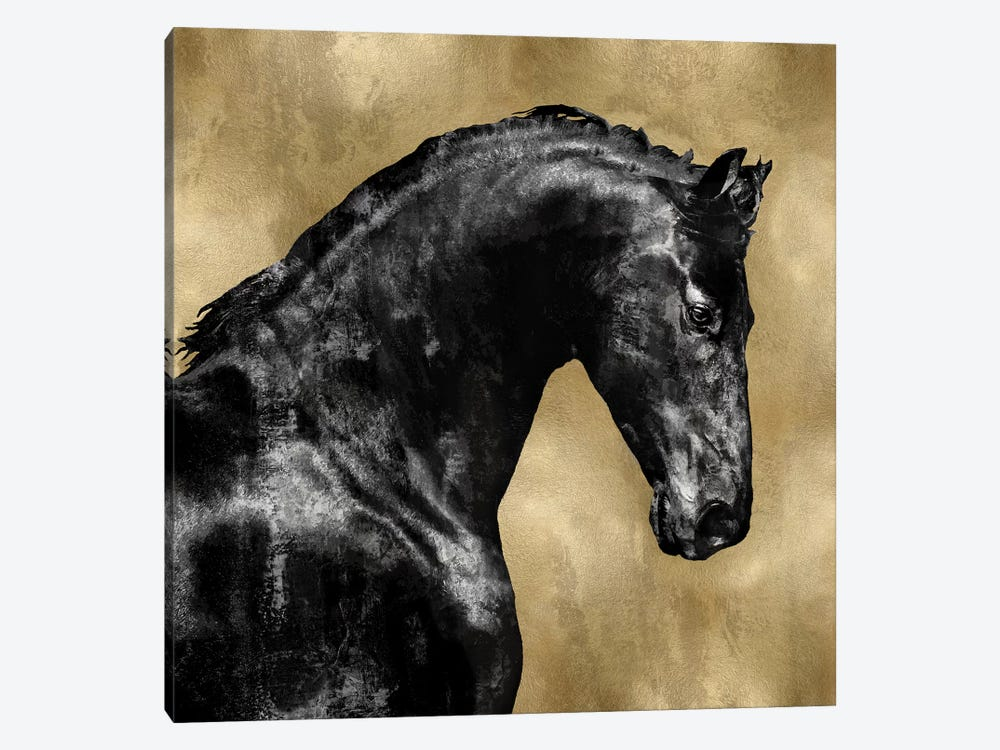 Black Stallion On Gold by Martin Rose 1-piece Art Print