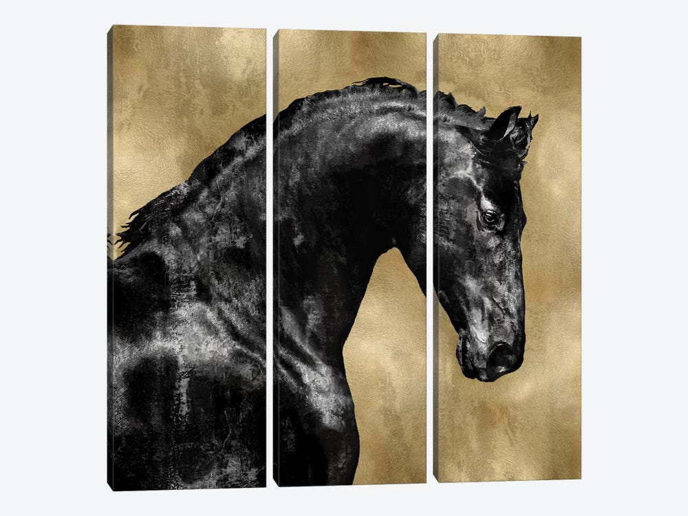 Black Stallion On Gold by Martin Rose 3-piece Art Print