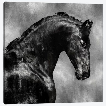 Black Stallion On Silver Canvas Print #MRO3} by Martin Rose Canvas Art Print