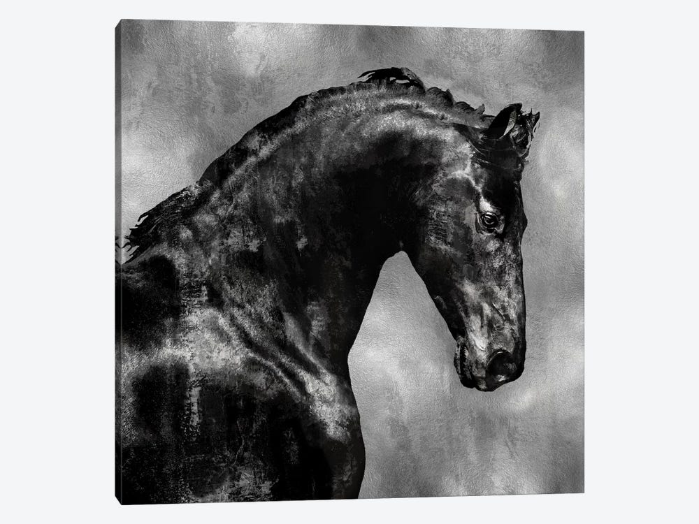 Black Stallion On Silver by Martin Rose 1-piece Canvas Wall Art