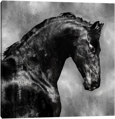 Black Stallion On Silver Canvas Art Print