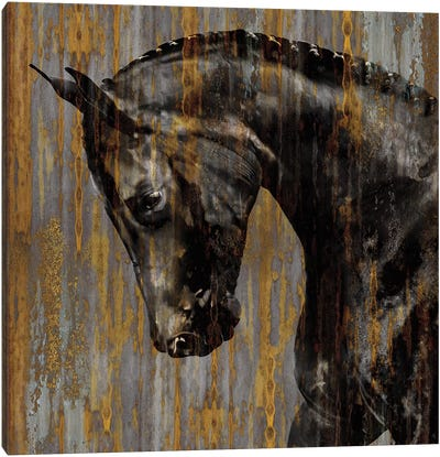 Horse I Canvas Art Print