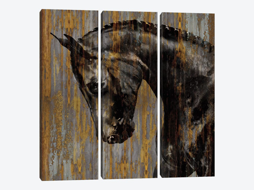 Horse I by Martin Rose 3-piece Canvas Print